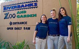 San Diego Zoo San Diego Zoo