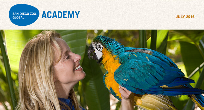 San Diego Zoo Global Academy, July 2016. Photo of trainer with a blue and gold macaw.