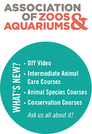 Association of Zoos & AquariumsWhat's New?DIY Video. Intermediate Animal Care Courses. Animal Species Courses. Conservation Courses. As us all about it!