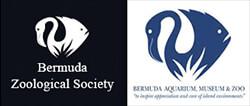 Bermuda Zoological Society. Bermuda Aquarium, Museum & Zoo.