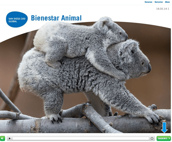 Opening page of Bienestar Animal course
