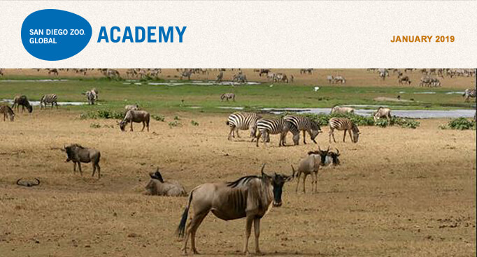 San Diego Zoo Global Academy, January 2019